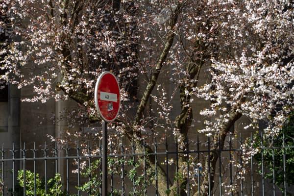 jardin Saint Ambroise